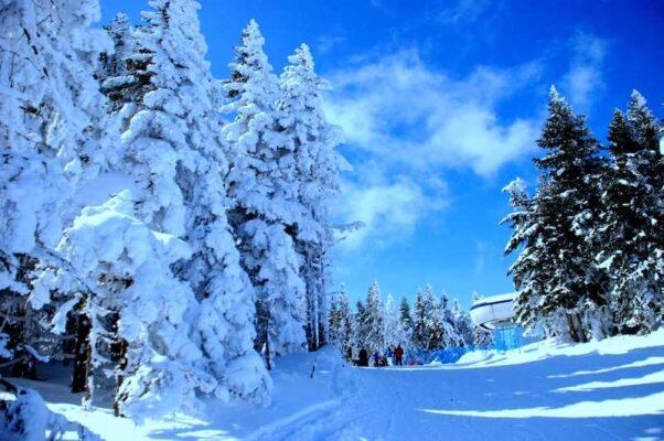 Kastamonu ve İlçelerinde Hava nasıl olacak (Kar Yağışı mı  Geliyor)